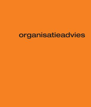 organisatieadvies-306x360